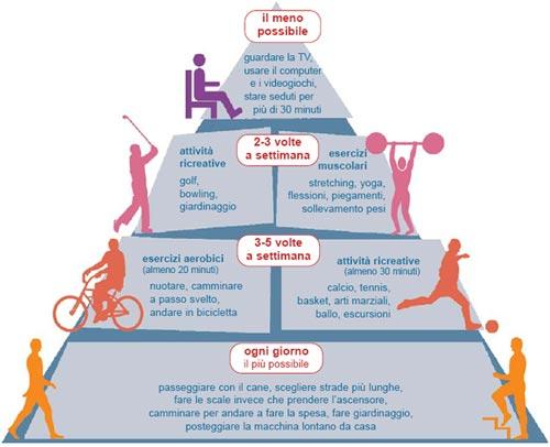 piramide att fis